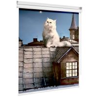 Рулонные шторы  классические - Кот на крыше