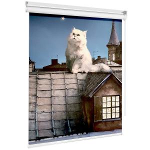 Рулонные шторы на мансардные окна кот на крыше