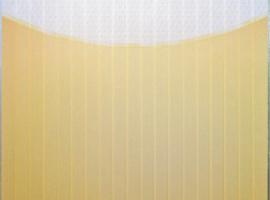 Вертикальные тканевые жалюзи с фотопечатью реклама Хагис