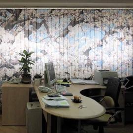 Вертикальные тканевые жалюзи с фотопечатью в кабинете