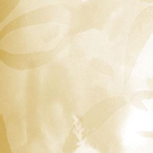 Вертикальные пластиковые жалюзи - Аквамарин бежевый