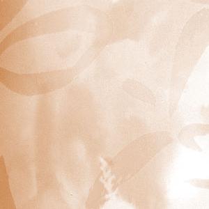 Вертикальные пластиковые жалюзи - Аквамарин персиковый