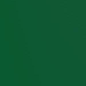 Вертикальные пластиковые жалюзи - Стандарт темно-зеленый